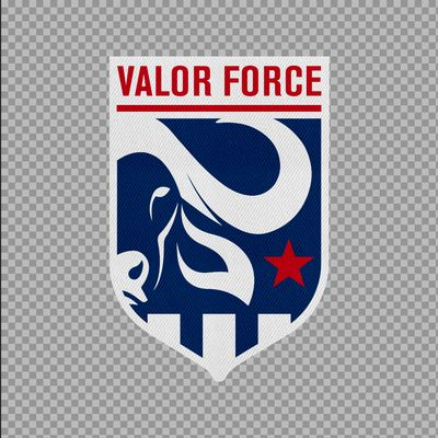 Avatar for Valor Force Dallas, TX Thumbtack