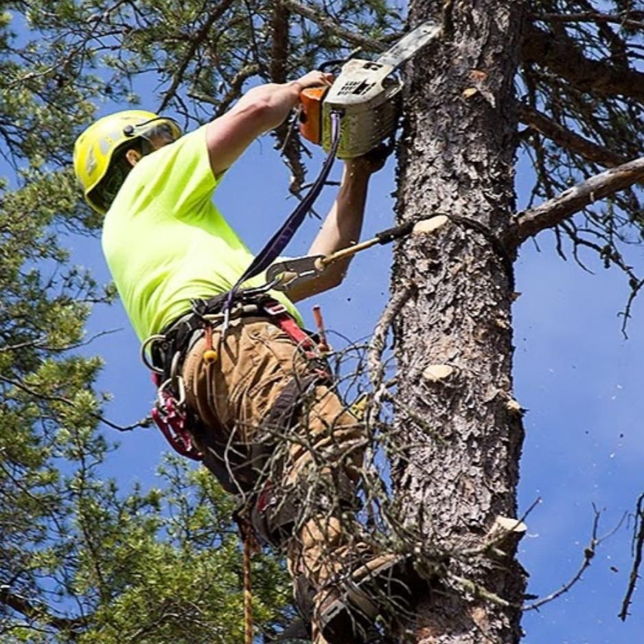 Nic's Works LLC Tree Service