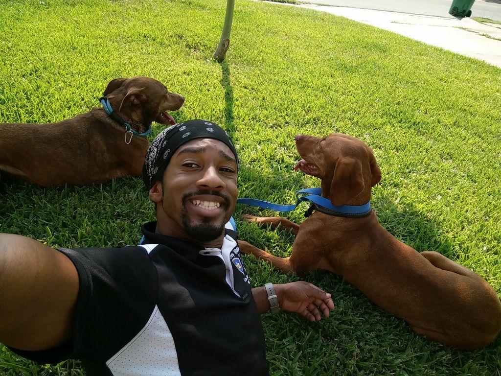 1st Class K-9 Dog Training