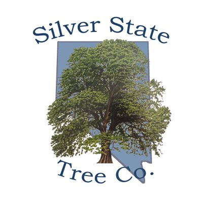 Avatar for Silver State Tree Company Reno, NV Thumbtack