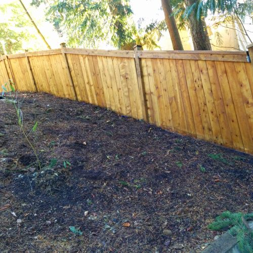 after pressure wash wood fence