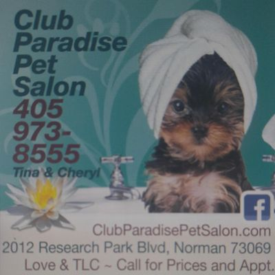 Avatar for Club Paradise Pet Salon, Norman, OK Norman, OK Thumbtack