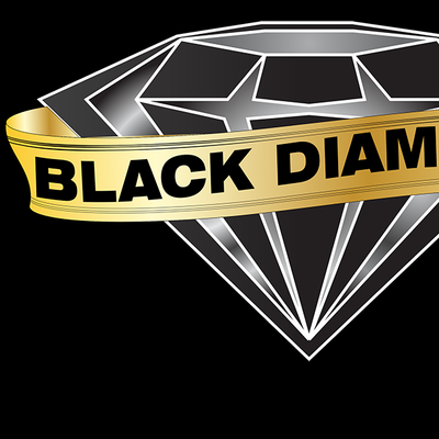 Avatar for Black Diamond Valet, Inc