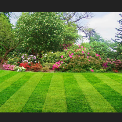 Avatar for The Lawn Practitioners Huntington, WV Thumbtack