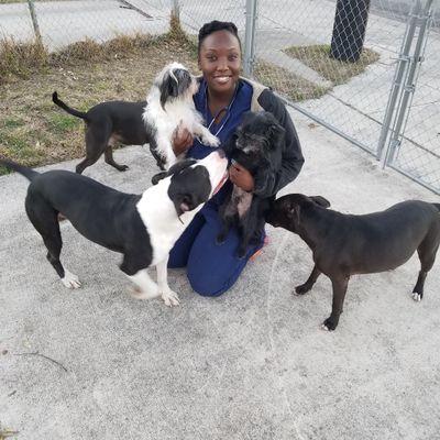 Avatar for Lia's All Breed Pet Sitting San Antonio, TX Thumbtack
