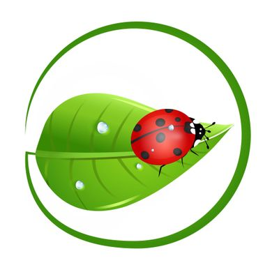 Avatar for Ladybug Balanced Health LLC