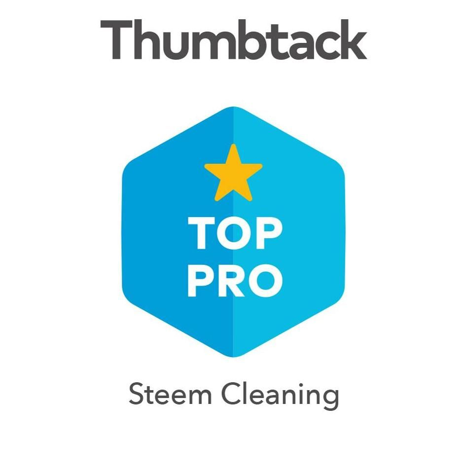 STEEM CLEANING