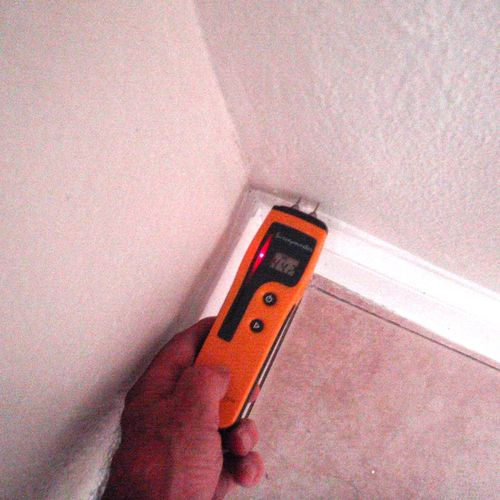 Identifying elevated levels of moisture in wall.