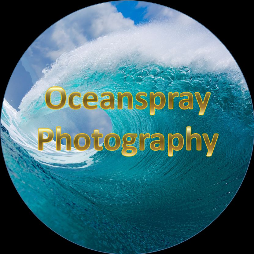 Oceanspray Photography & Videography
