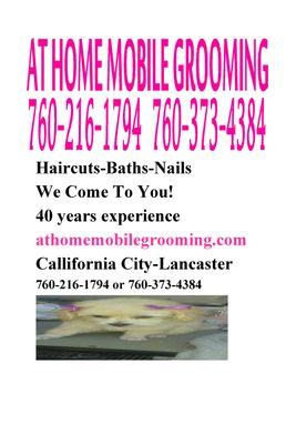 Avatar for At Home Mobile Grooming California City, CA Thumbtack