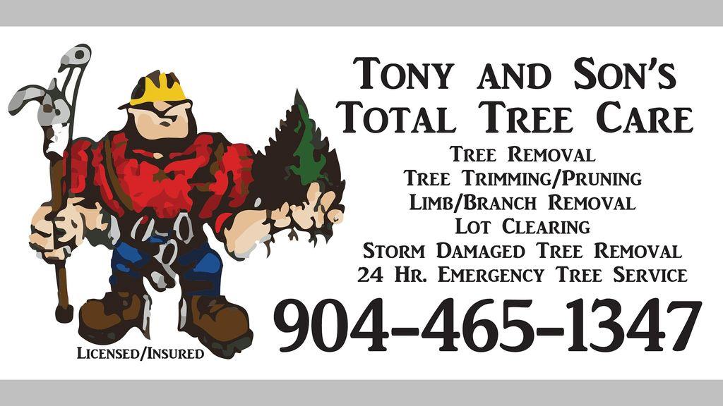 Tony and Son's Tree service
