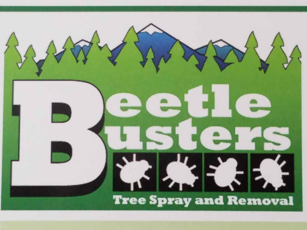 BeetleBusters llc