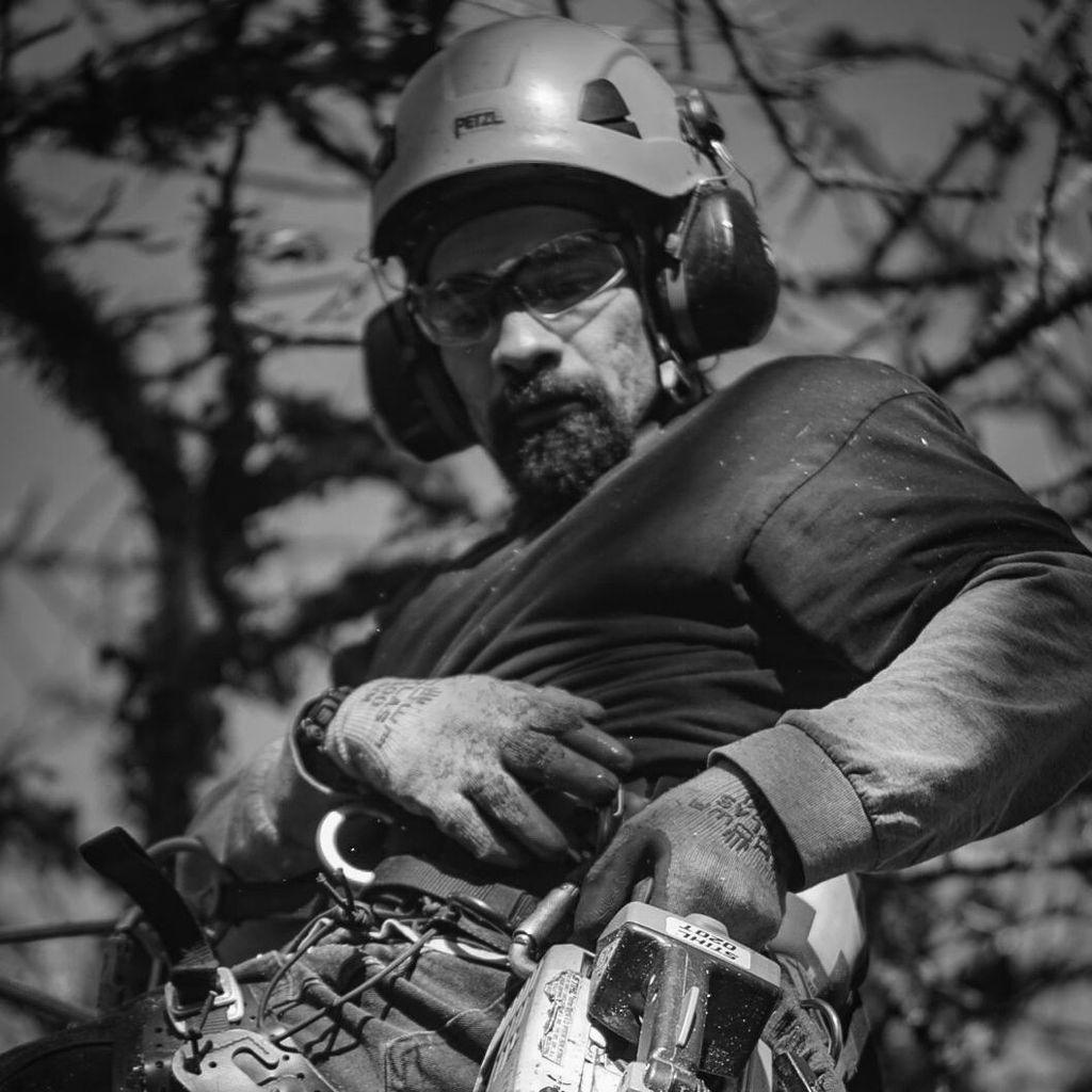 The Honest Arborist LLC