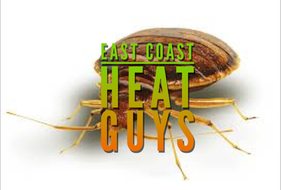 Avatar for East Coast Heat Guys Philadelphia, PA Thumbtack