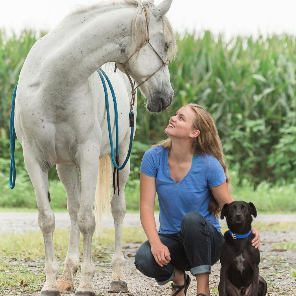 Engineering Change: Canine + Equine Training