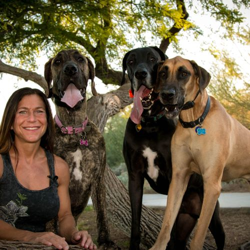 Elisa and her Great Danes doing the Paws target command!