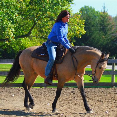 Avatar for The Equine Affect Columbia Station, OH Thumbtack