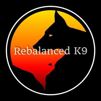 Avatar for RebalancedK9 Chino Valley, AZ Thumbtack