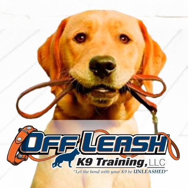 Off Leash K9 Training, Smyrna