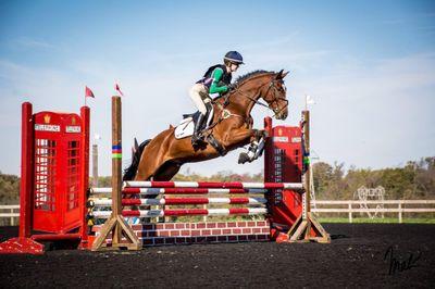 Avatar for Appleton Equestrian