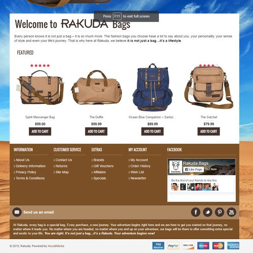 eCommerce Web Design Example 2