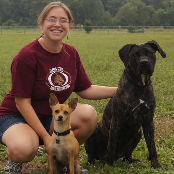 Paws About Town: Canine Training and Obedience