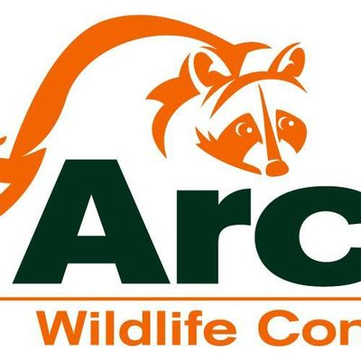 Avatar for Archer Wildlife Control Services Spring Lake, NC Thumbtack