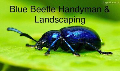 Avatar for Blue Beetle Handyman & Landscaping