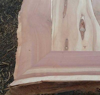 Avatar for Jerrod Bossard New Braunfels, TX Thumbtack