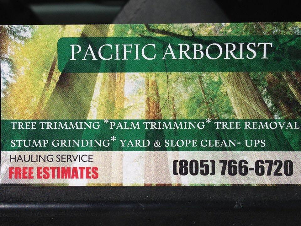 Pacific Arborist Gardening