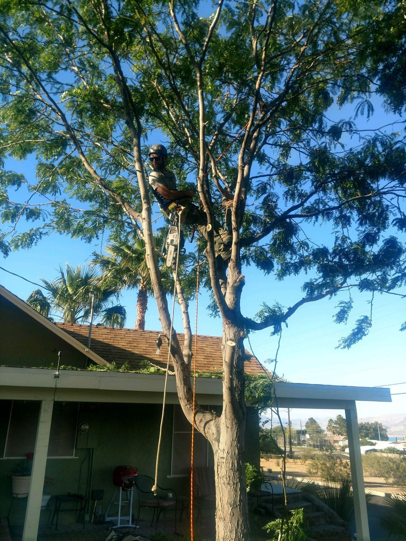 Gardiner Tree Trimmimg