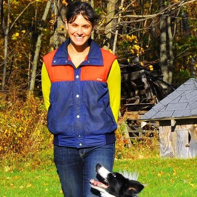 Avatar for You and Your Dog Training & Services New Boston, NH Thumbtack