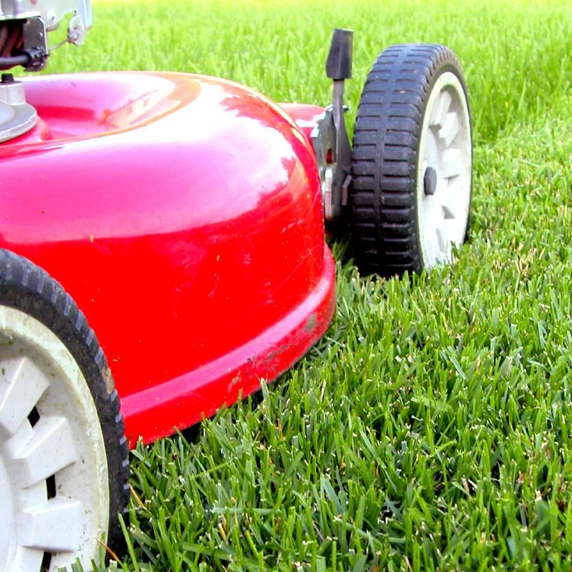 Bush Whacker Lawn Care LLC