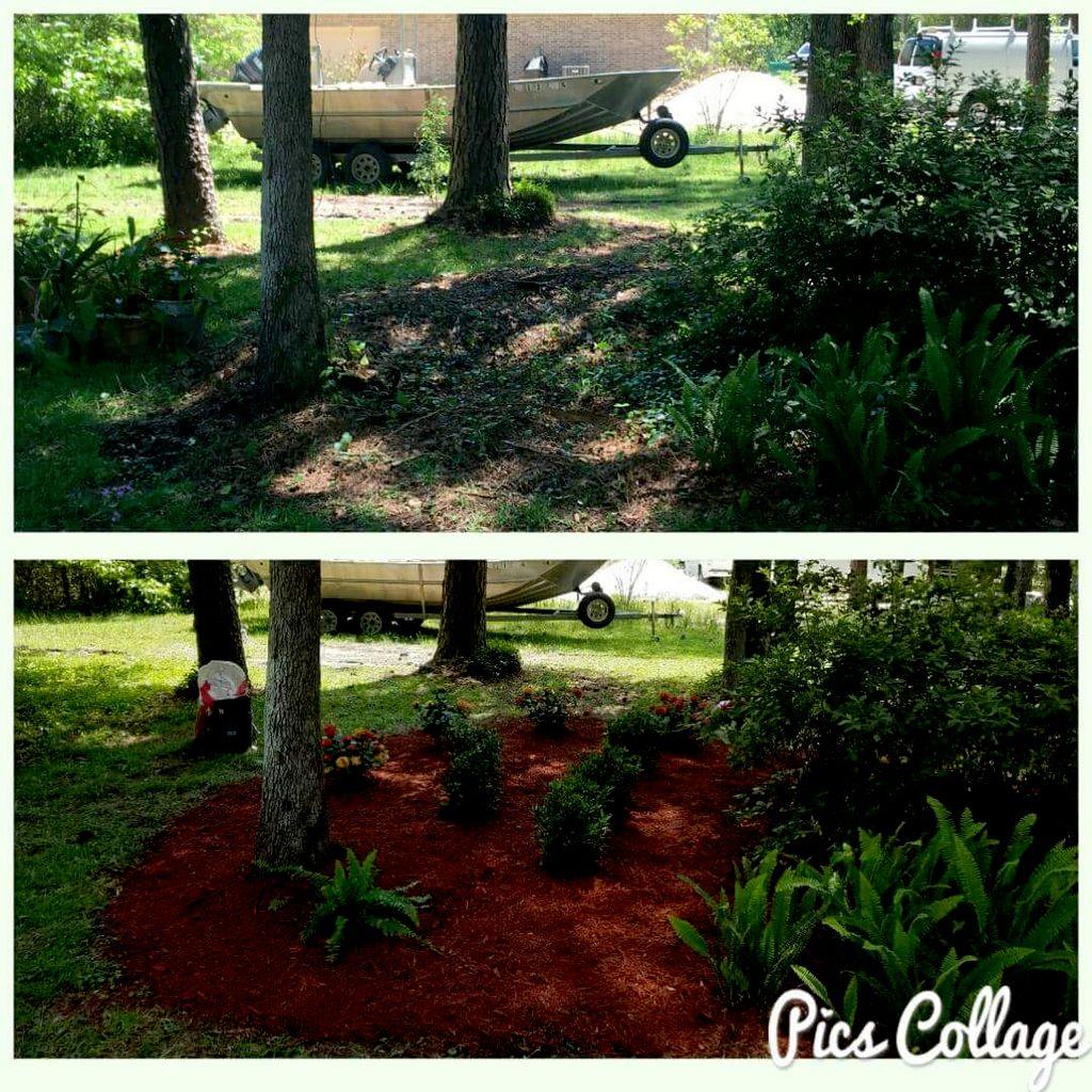 Arbor Pro Tree and Lawn Maintenance