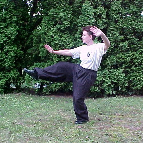 Here I am in the back yard demonstrating T'ai Chi kick.