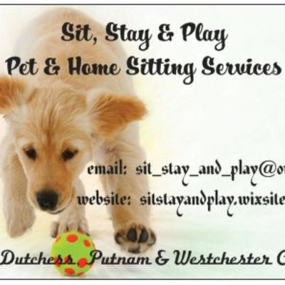 Avatar for Sit Stay and Play - Pet & Home Sitting Services