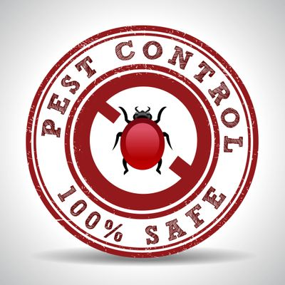 Avatar for Modern Pest Management Independence, MO Thumbtack