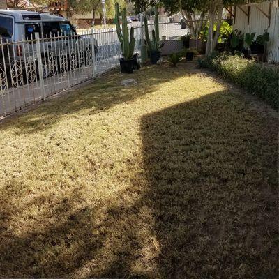 Avatar for E&G Landscaping & Maintenance Calexico, CA Thumbtack
