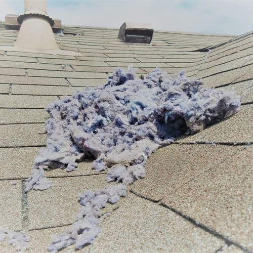 Clogged Dryer Vent at Exhaust Point - Roof