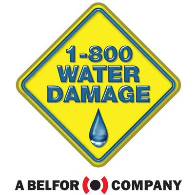 Avatar for 1-800 Water Damage of SW Indiana
