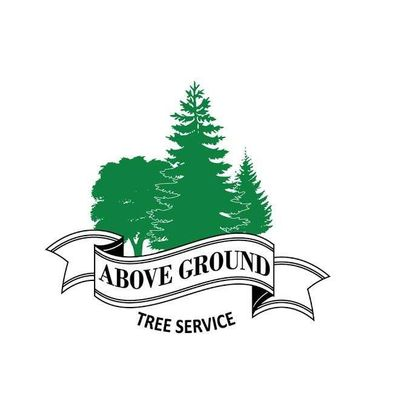 Avatar for Above Ground Tree Service