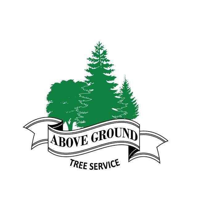 Above Ground Tree Service