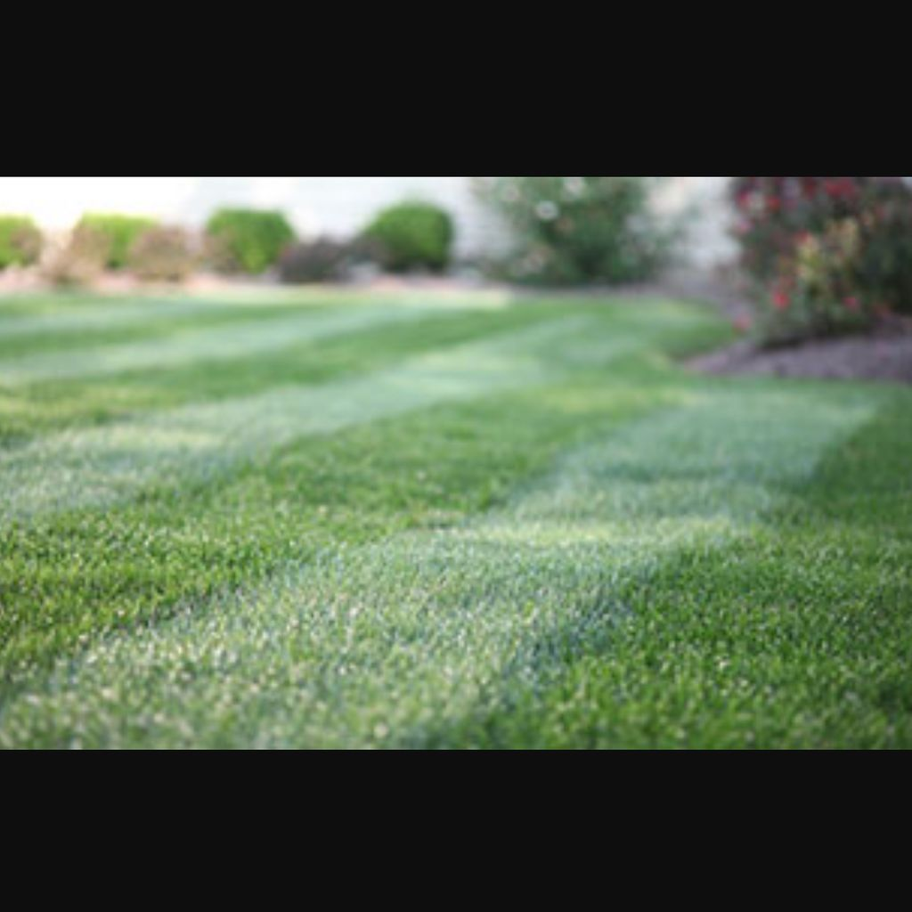 Cutting Edge Lawn Care And Maintenance LLC