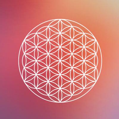 Avatar for Harmony Fitness Goshen, IN Thumbtack