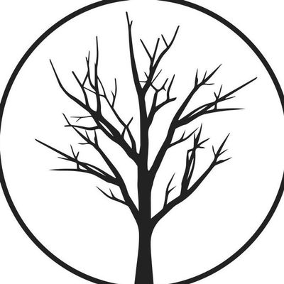 Avatar for Stone Tree Flooring Englewood, CO Thumbtack