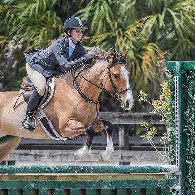 Avatar for High Tide Equestrian Saint Petersburg, FL Thumbtack