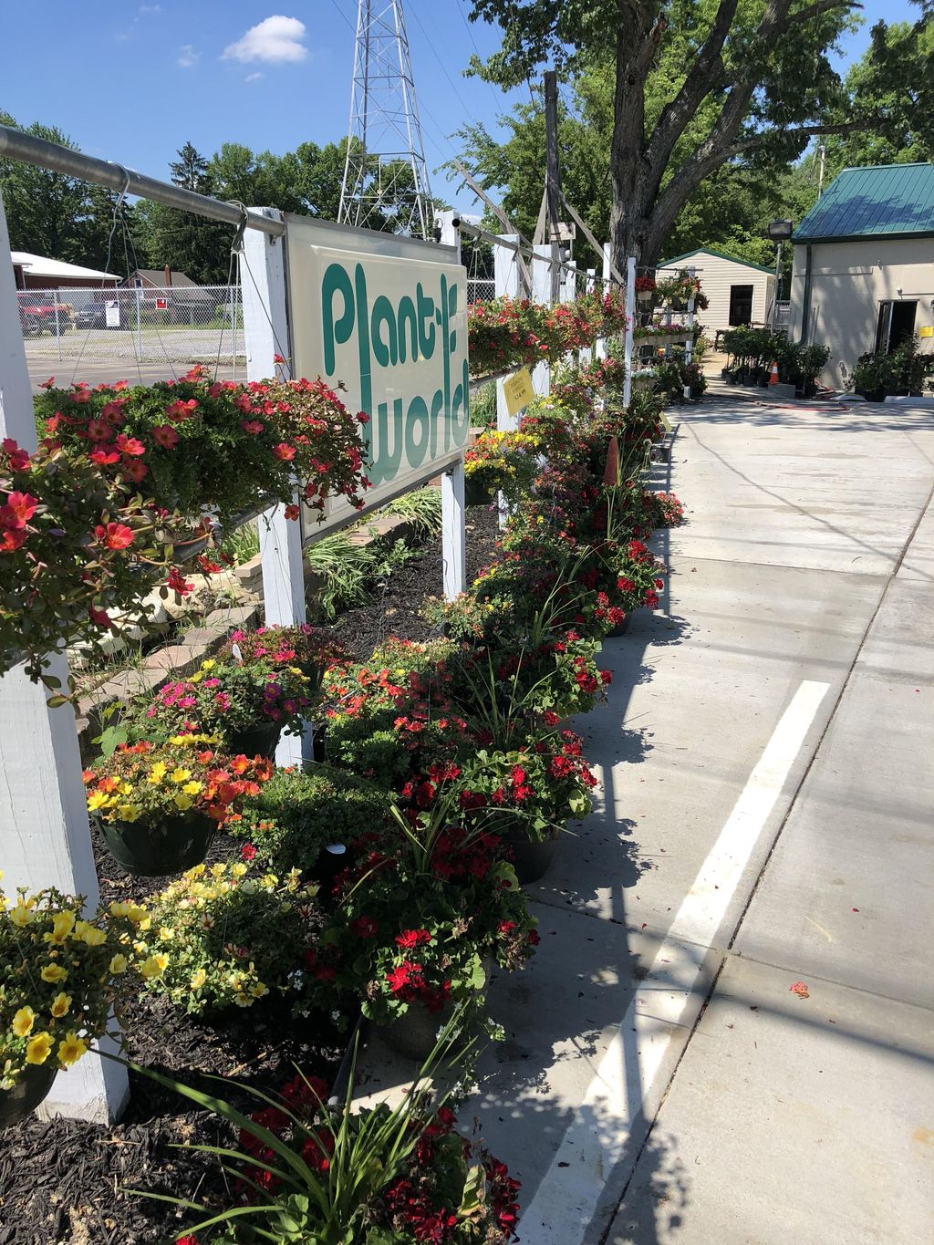 Plant World Nursery And Landscaping LLC