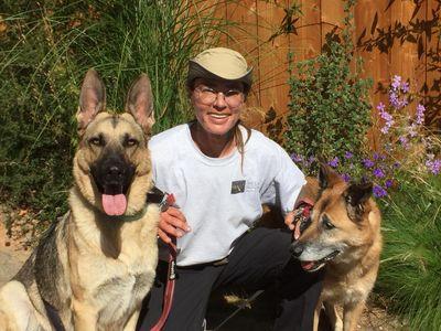 Avatar for Majyk Paws Dog Training