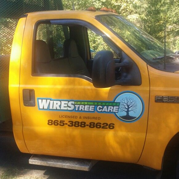 Wires Tree Service