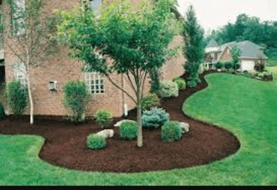 Avatar for carolina lawns